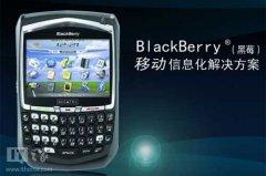 黑莓中国唱空城计:仅剩60人,只留一个邮箱
